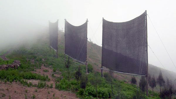 20140823082848-peru-fog-catchers_10142_600x450